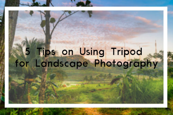 5 Tips on Using Tripod for Landscape Photography